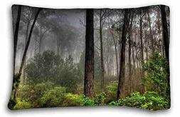 Generic Personalized  Soft Pillow Case Cover 20*30 Inch Zipp