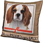 E&S Pets Super Soft Pillow Dog Breed King Charles Cavalier P