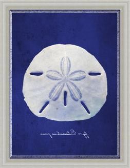 Sand Dollar by GI Artlab Beach Cottage Decor 14x18 Framed Ar